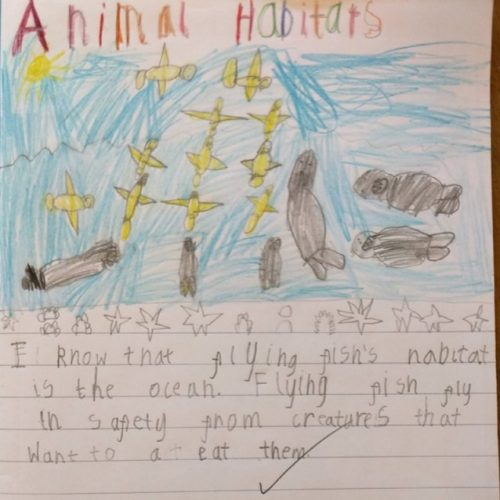 Living Things and Their Habitats 2