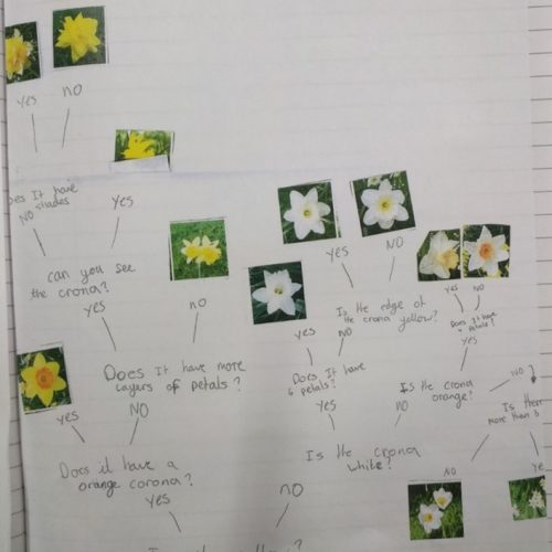 Living Things and Their Habitats 3