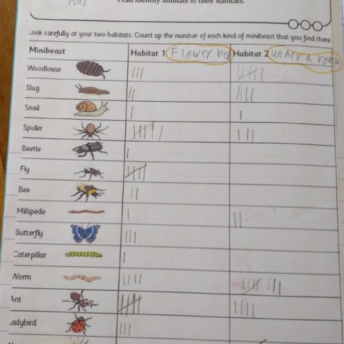 Living Things and Their Habitats 5