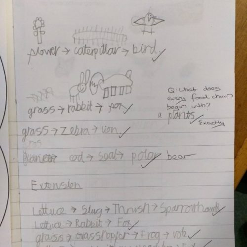 Living Things and Their Habitats 9